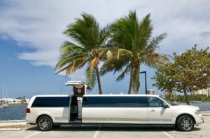 White Lincoln Navigator Limo with Gull Wing Doors 14 ...